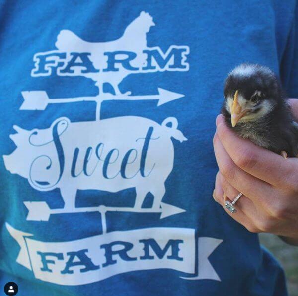 farm sweet