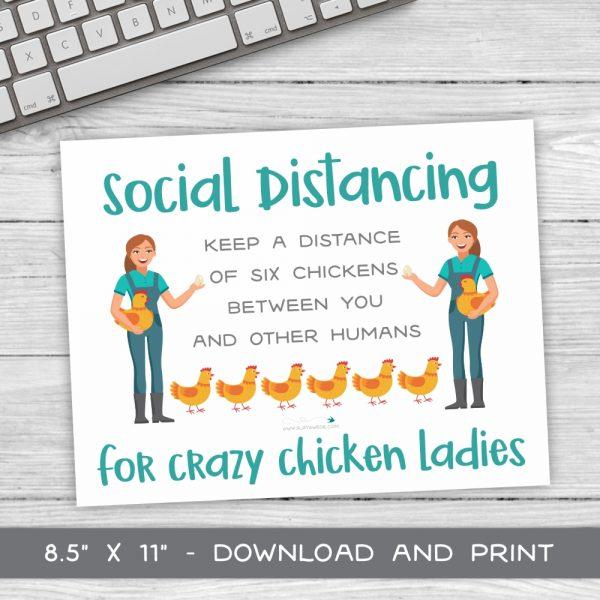 SD Chicken Ladies