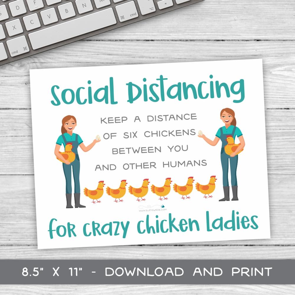 SD-Chicken-Ladies