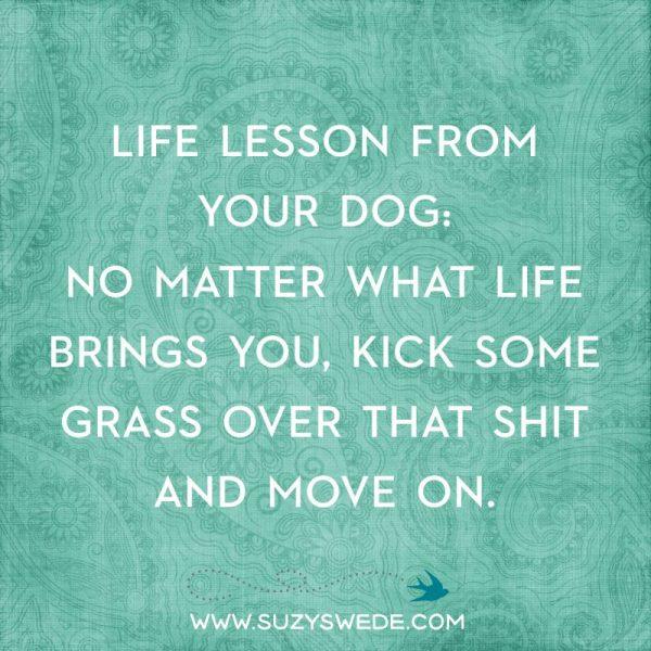 LIFE LESSON DOG